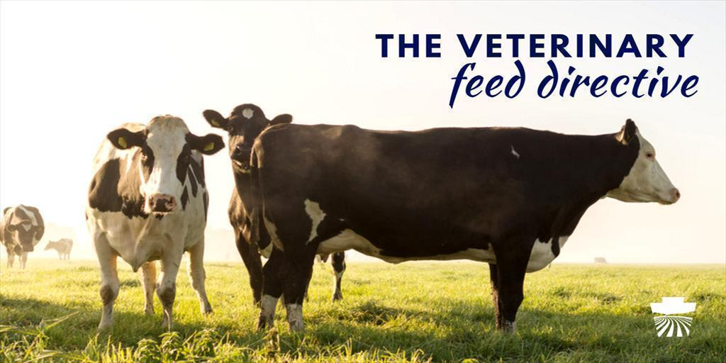 The Veterinary Feed Directive