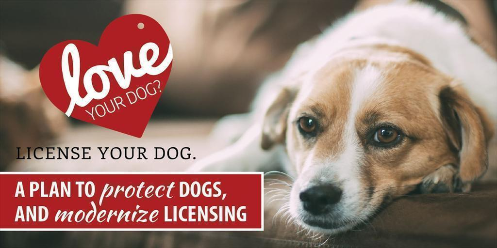 A Plan to Protect Dogs and Modernize Dog Licensing in PA